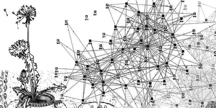 A poofy dandelion floats over a dense network graph.