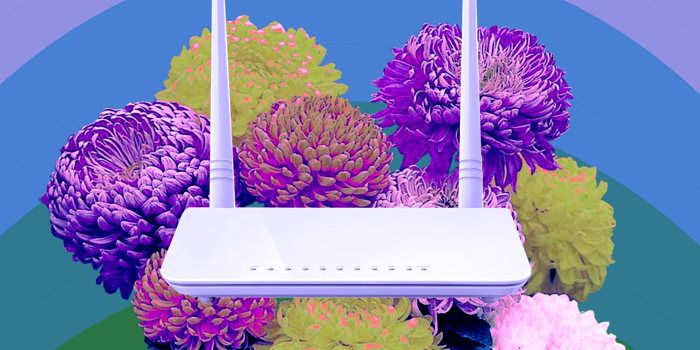 A collage of a router sitting on a bed of peonies.